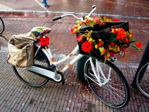 Bloemetjes en bijtjes op de fiets