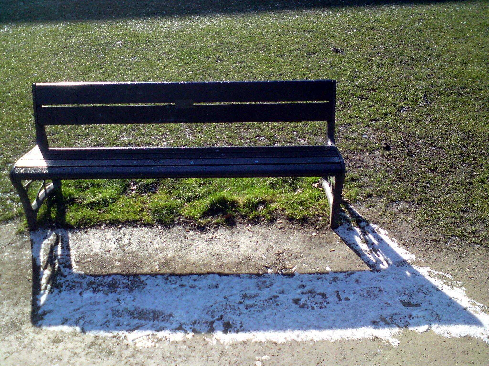 Vondelparkbank als sneeuw voor de zon
