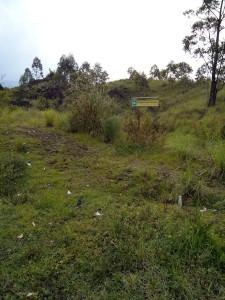 Het vredesbos bij de Gunung Batur ontkomt ook niet aan plastic