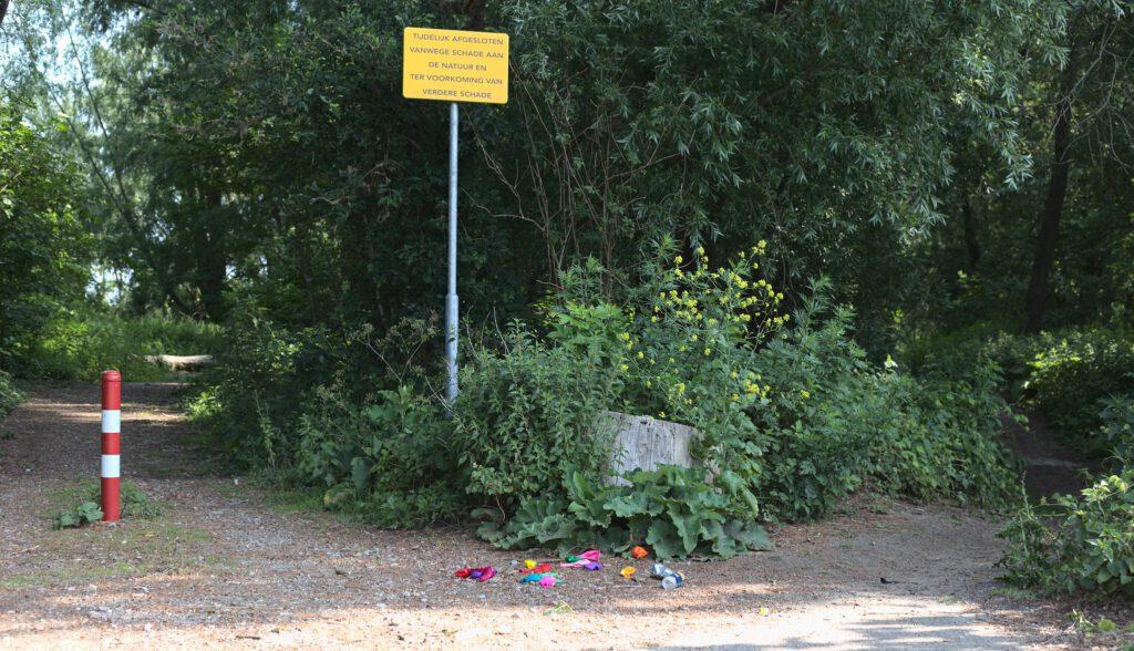 Lachgas ballonetjes park natuur